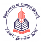 university of central pakistan